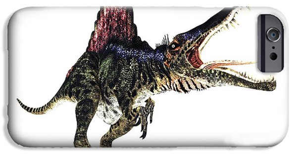 Northern Africa iPhone Cases - Spinosaurus Dinosaur, Artwork iPhone Case by Animate4.comscience Photo Libary