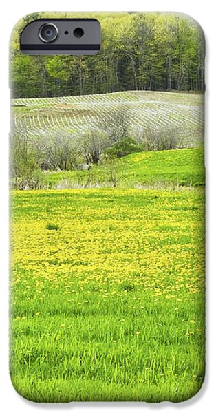 Spring Farm Landscape With Dandelion Bloom in Maine iPhone Case by Keith Webber Jr