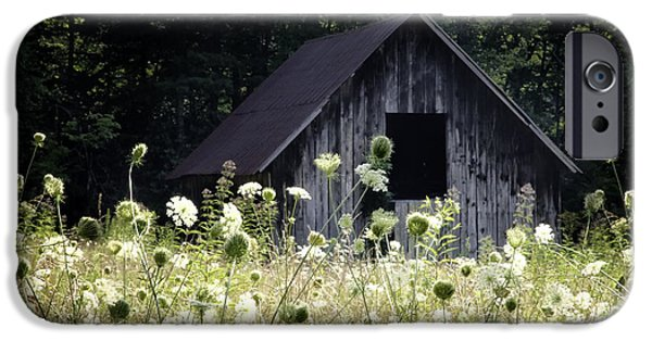 Barns Photographs iPhone Cases - Summer Barn iPhone Case by Rob Travis