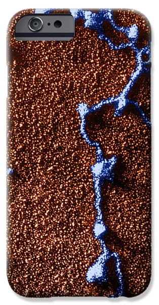 Tem Of Rna Attached To Dna iPhone Case by Omikron