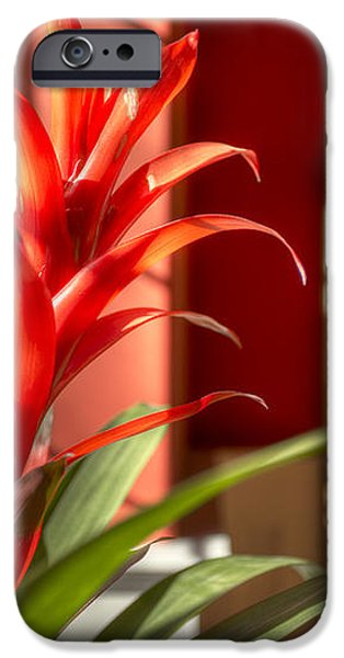 The Meadow At Falcon Ridge Residential iPhone Case by Dan Kaufman