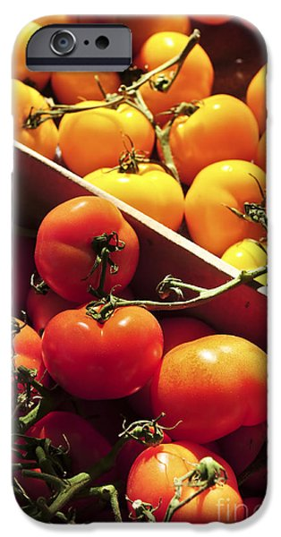 Fresh Produce iPhone Cases - Tomatoes on the market iPhone Case by Elena Elisseeva