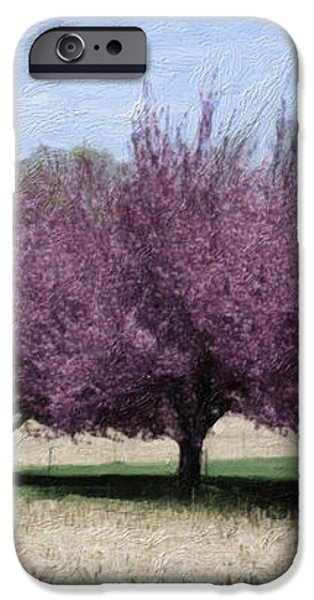 Trees On Warwick iPhone Case by Trish Tritz
