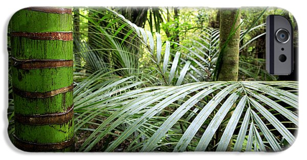 Environment Photographs iPhone Cases - Tropical jungle iPhone Case by Les Cunliffe