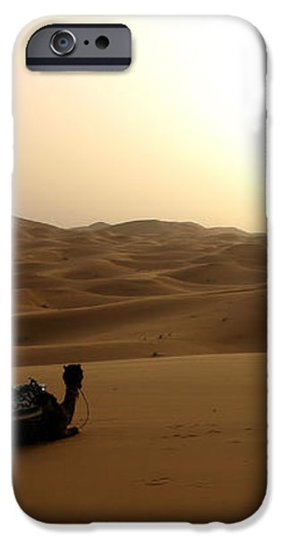 Two camels at sunset in the desert iPhone Case by Ralph A  Ledergerber-Photography