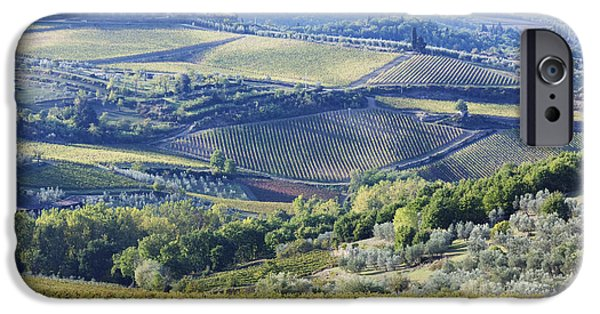 Chianti Landscape iPhone Cases - Vineyards and Olive Groves iPhone Case by Jeremy Woodhouse