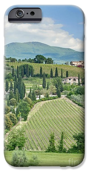 Vineyards on a Hillside iPhone Case by ROB TILLEY
