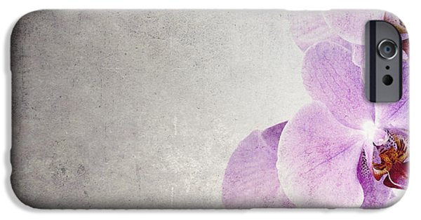 Bud iPhone Cases - Vintage orchids iPhone Case by Jane Rix