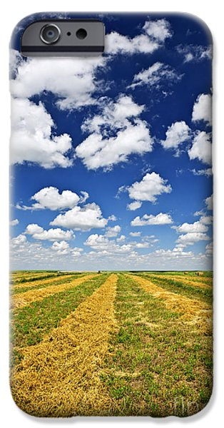 Crops iPhone Cases - Wheat farm field at harvest in Saskatchewan iPhone Case by Elena Elisseeva