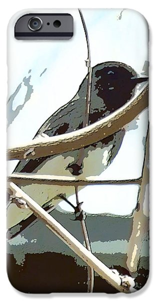 Winter Bird iPhone Case by Artist and Photographer Laura Wrede