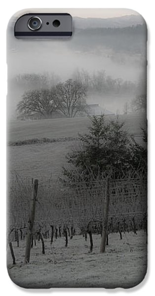 Winter Vineyard iPhone Case by Jean Noren