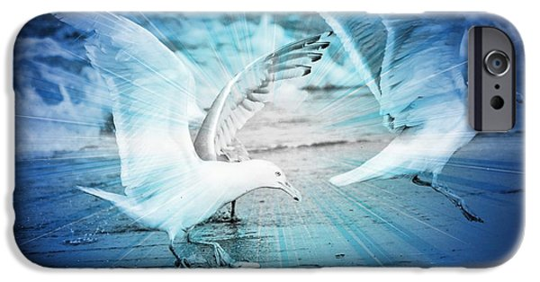 Seagull iPhone Cases - Seagulls  iPhone Case by Debra  Miller