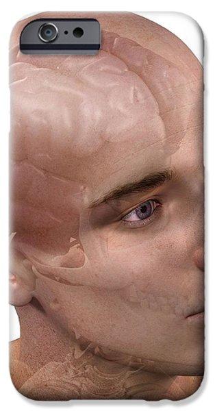 Head Anatomy, Artwork iPhone Case by Sciepro
