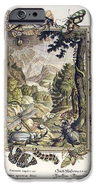 1731 Johann Scheuchzer Creation 5/6th Day iPhone Case by Paul D Stewart