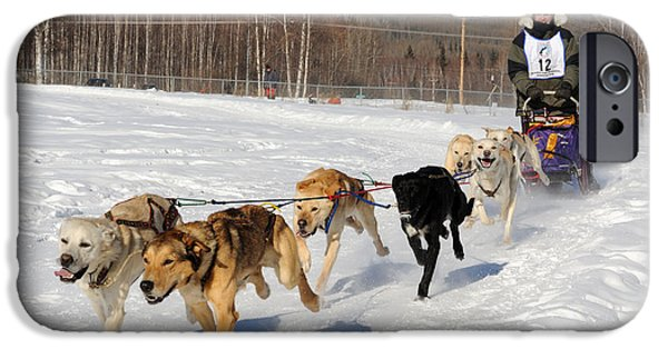 Sled Dog iPhone Cases - 2010 Limited North American Sled Dog Race iPhone Case by Gary Whitton