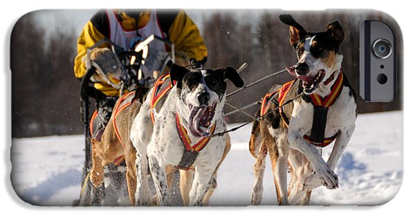 Sled Dog iPhone Cases - 2011 Limited North American Sled Dog Race iPhone Case by Gary Whitton