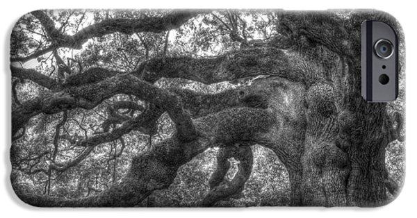 Oak Trees iPhone Cases - Angel Oak Tree Charleston SC iPhone Case by Dustin K Ryan