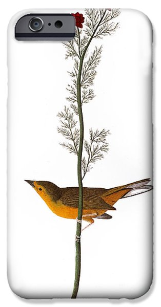 AUDUBON: WARBLER, (1827) iPhone Case by Granger