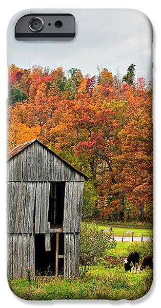 Autumn Farm iPhone Case by Steve Harrington