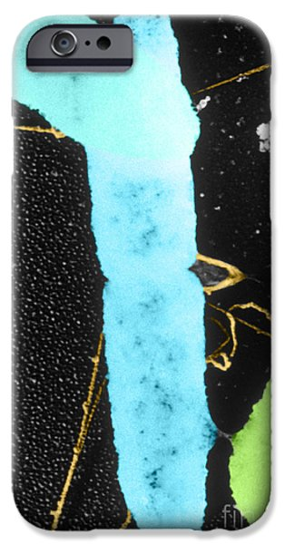 Prokaryote iPhone Cases - Bacterial Conjugation, Tem iPhone Case by Anderson / Omikron