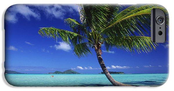 Overhang iPhone Cases - Bora Bora, Palm Tree iPhone Case by Ron Dahlquist - Printscapes