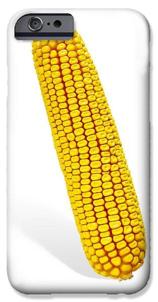Sweet Corn iPhone Cases - Corn Cob iPhone Case by Carlos Caetano
