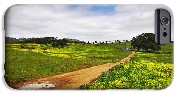 Shed iPhone Cases - Countryside landscape iPhone Case by Carlos Caetano