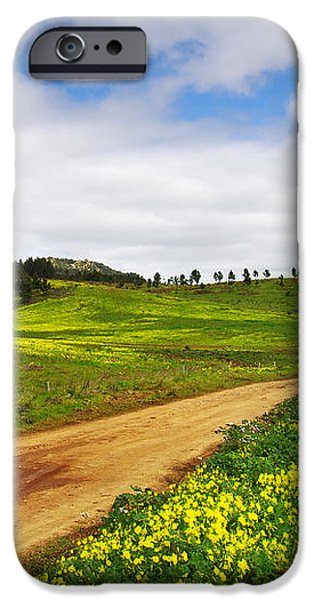 Countryside landscape iPhone Case by Carlos Caetano