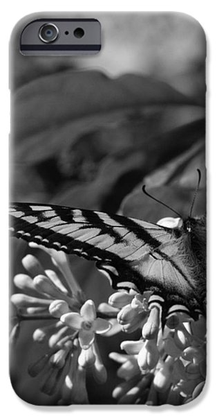Expectation of the Dawn iPhone Case by Sharon Mau