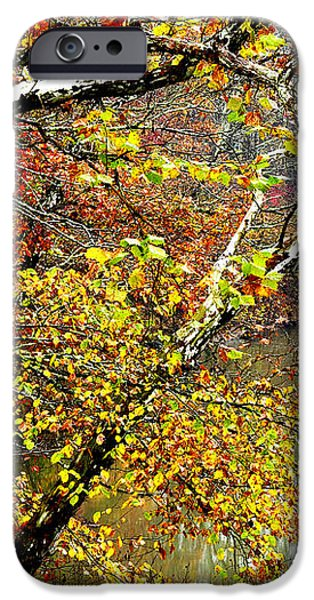 Fall along West Fork River iPhone Case by Thomas R Fletcher