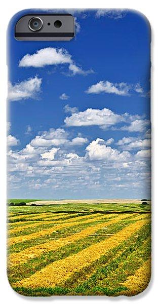 Farm field at harvest in Saskatchewan iPhone Case by Elena Elisseeva