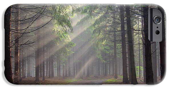 Eerie iPhone Cases - God beams - coniferous forest in fog iPhone Case by Michal Boubin