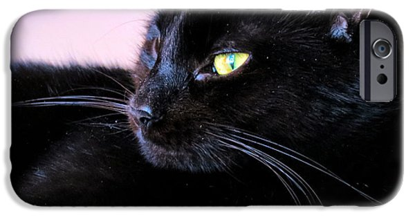 Witch Halloween Cat Wicca iPhone Cases - Green Eyes iPhone Case by Michelle Milano