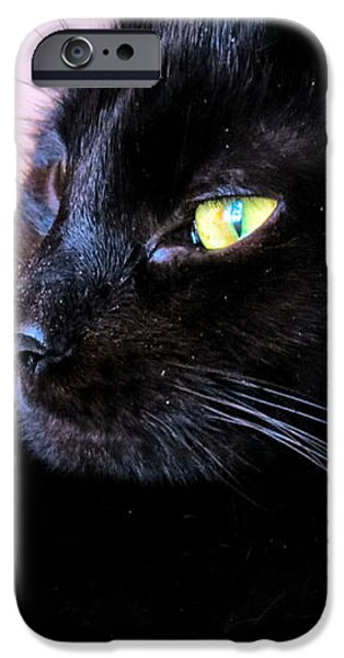 Green Eyes iPhone Case by Michelle Milano