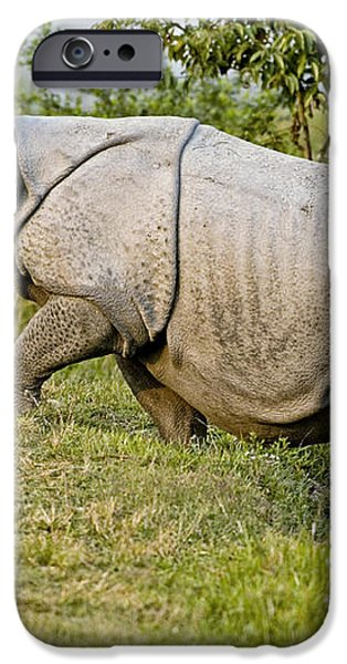 Indian Rhinoceros iPhone Case by Tony Camacho