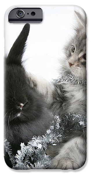 Kitten And Rabbit Getting Into Tinsel iPhone Case by Mark Taylor
