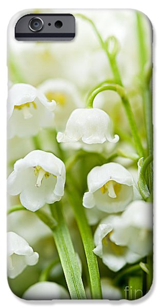 Botanical Photographs iPhone Cases - Lily-of-the-valley flowers iPhone Case by Elena Elisseeva