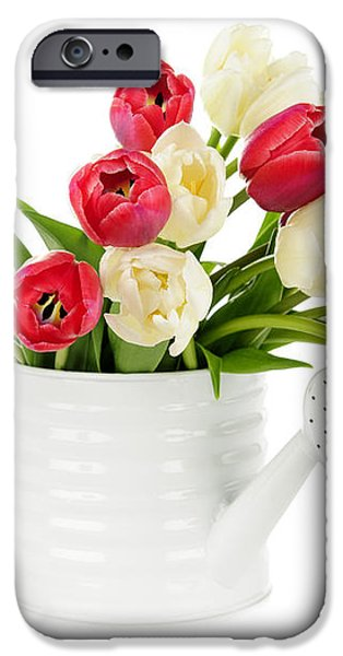 Red and white tulips iPhone Case by Elena Elisseeva