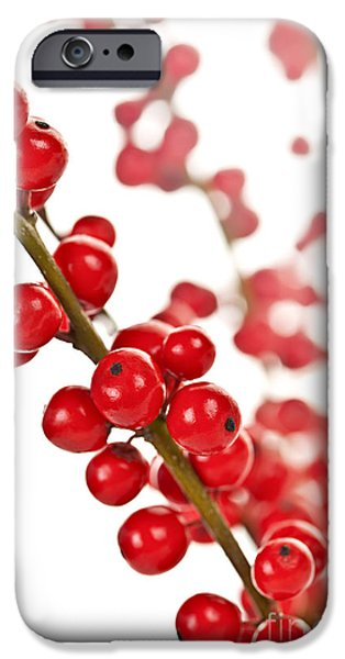 Red Christmas berries iPhone Case by Elena Elisseeva