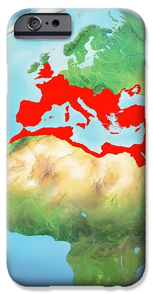 Roman Empire, Artwork iPhone Case by Gary Hincks