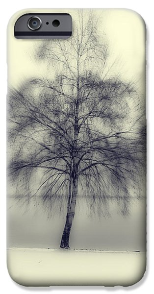 Snowy Evening iPhone Cases - Winter Tree iPhone Case by Joana Kruse