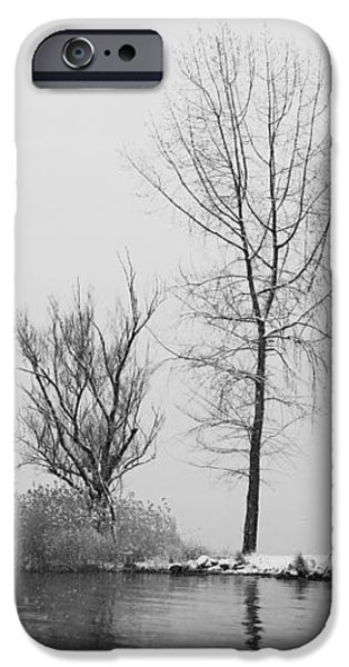 wintertrees iPhone Case by Joana Kruse