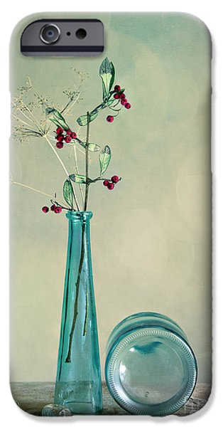 Shiny iPhone Cases - Autumn Still Life iPhone Case by Nailia Schwarz