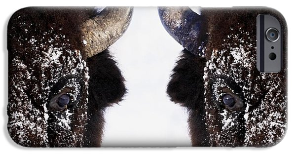 Wintertime iPhone Cases - Bison In Winter iPhone Case by Richard Wear