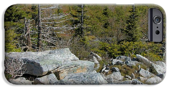 Sod iPhone Cases - Dolly Sods Wilderness iPhone Case by Thomas R Fletcher