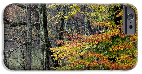 West Fork Photographs iPhone Cases - Fall along West Fork River iPhone Case by Thomas R Fletcher