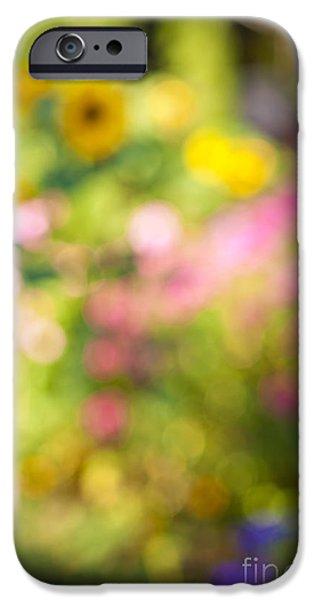 Gardening iPhone Cases - Flower garden in sunshine iPhone Case by Elena Elisseeva