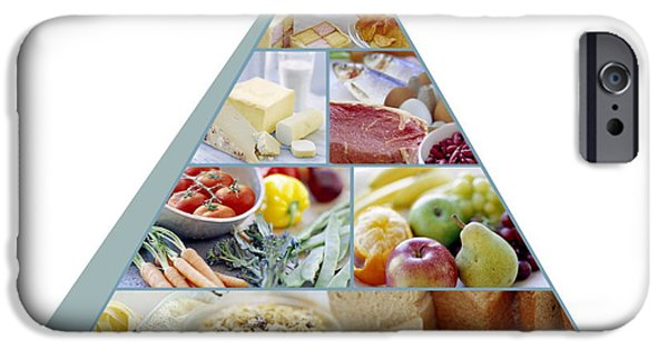 Proportions iPhone Cases - Food Pyramid iPhone Case by David Munns