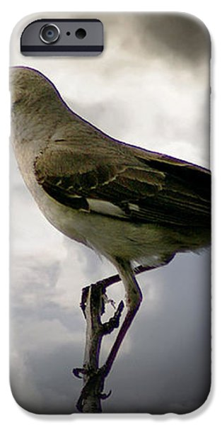 Mockingbird iPhone Case by Brian Wallace