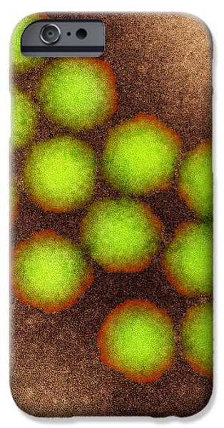 Poliovirus Particles, Tem iPhone Case by Nibsc